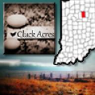 CluckAcres