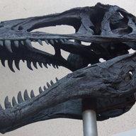 PaleoDan