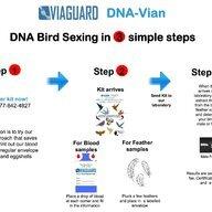 DNAvian