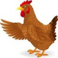 Chucks clucks