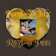 Novl-T Chix