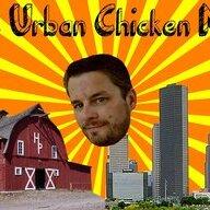 urbanchickenman
