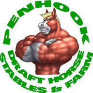 Penhook Drafts