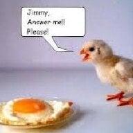 Chicky 13