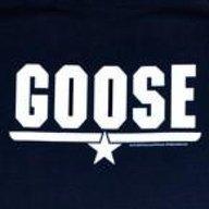 Goose3984