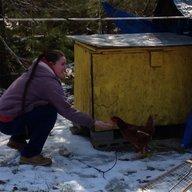 ChickenLady54