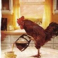 chickencoopr