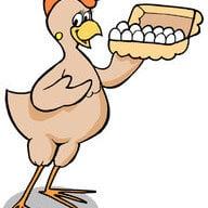 eggcellent eggs