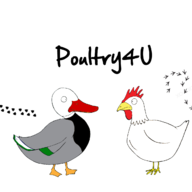 Poultry4U