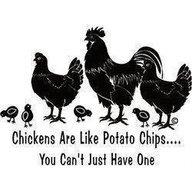 Chickengirl68