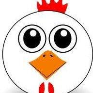 chicken238