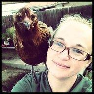 chickenhead8