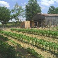 davisfamilyfarm