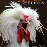 ChickenMaster13