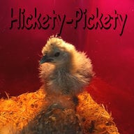 Hickety-Pickety