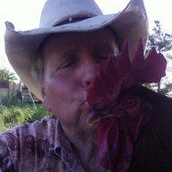 Chickenpen