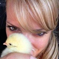 Chicklover36