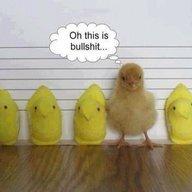 ChickBayou