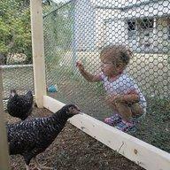 littlebirdgirl