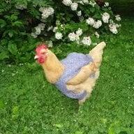 chicks4fun