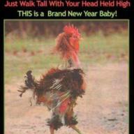 its raining hen