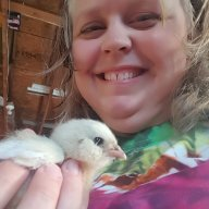 Providence Chick