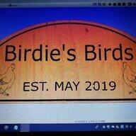 Birdies Birds