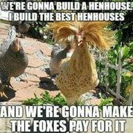 Thesweetbirdsflock