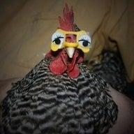 Grand-hen-ma