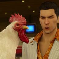 25chickens
