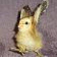 mythkat