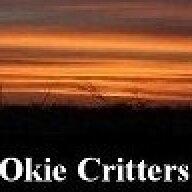 OkieCritters