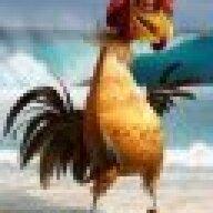 chickenjoefan