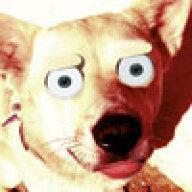 therowdydog