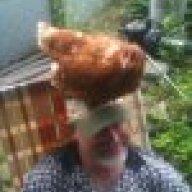 ChickenAl