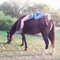 horsecrazychicklovingkid