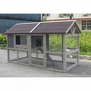 Innovation Pet Deluxe Farm House Chicken Coop Coops