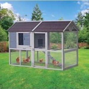 Innovation Pet Deluxe Farm House Chicken Coop Up To 8 Chickens