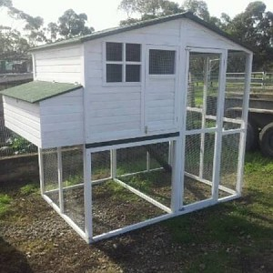 Walk In Chicken House white walk-in chicken coop | backyard chickens