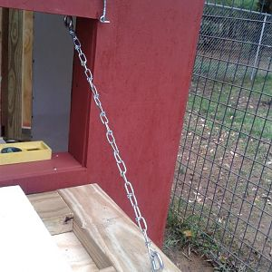 "The chain and latch for the ""egg door"""