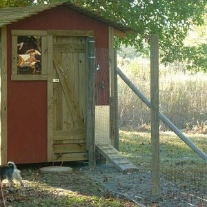 Our little chicken coop!