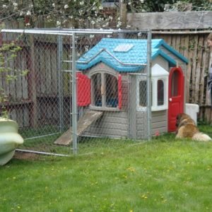 The starting if the kennel around the playhouse.