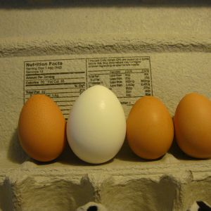 They finally started laying. The white egg int the middle is a medium egg from the store. Their eggs were so small.