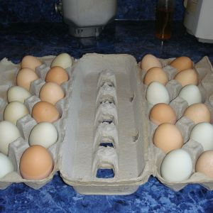 First batch of eggs I sold.