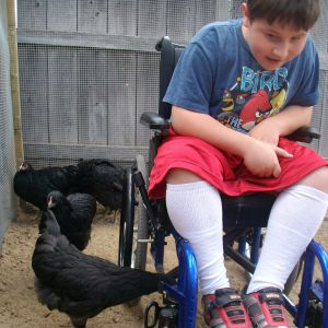 I made the door to the run wide enough to accomodate my son's wheelchair. He loves gettng out to feed mealworms to the girls.