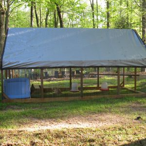 I used a 12' x 8' tarp on the run for shade and rain.  Works very well.