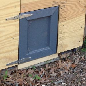 "Here is another repair. The chicken door was rotted, as was the frame and much of the bottom 24"" of the siding. It was still structurally good, but lacks a certain ""curb appeal."" The door will have a bolt on the outside and it will open directly into their run."