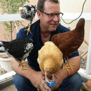 Husband and 4 of our girls. Clockwise starting next to his head. Checkers, Ginger, Fat Amy and Chip