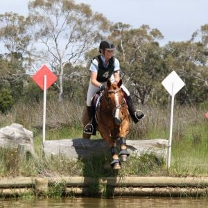 Stea eventing championships 2013