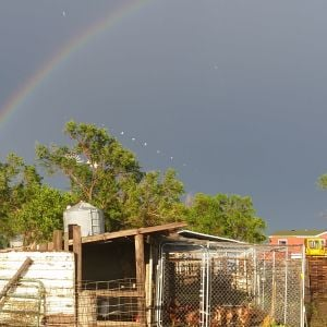 A wider picture of the DOUBLE rainbow over the farm. On the left is my boyfriend's shop where he works on semi trucks and trailers.